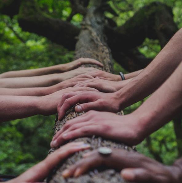Hands working together